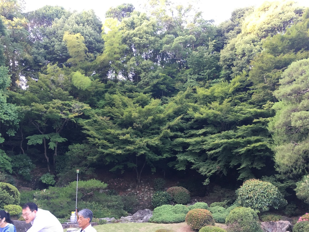 f:id:matsunari812:20180621202210j:image