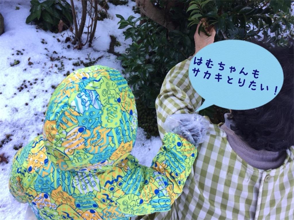 f:id:matsurimama:20161231065925j:image