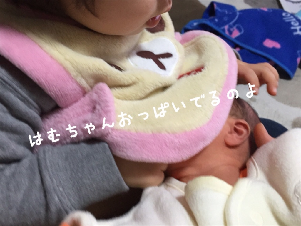 f:id:matsurimama:20170119123604j:image
