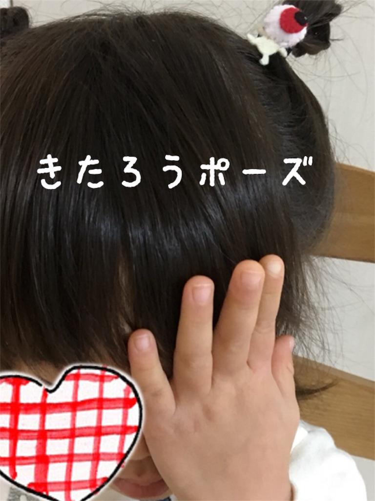 f:id:matsurimama:20180130120552j:image