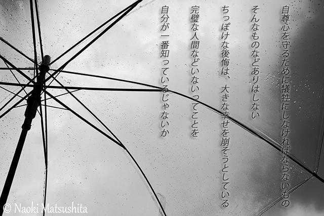 f:id:matsushita-photo:20170526221927j:plain