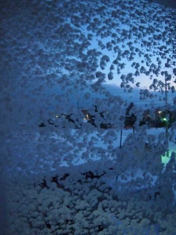 f:id:matsusun:20121214143637j:image:w360