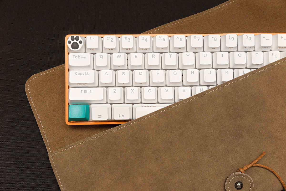 Anne Pro 2 with KBDfans Lowprofile Aluminium Case