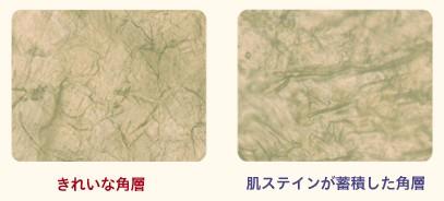 f:id:matuken1120:20160221095307j:plain
