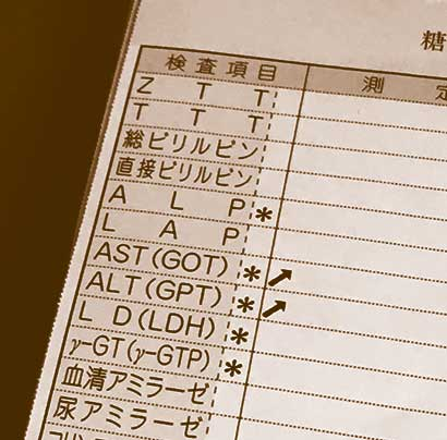 血液検査 肝機能数値
