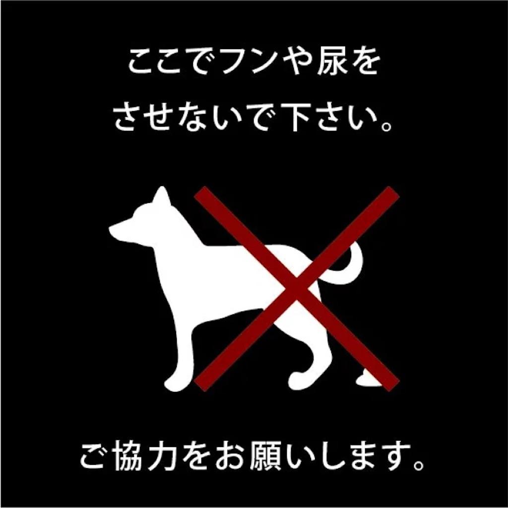 f:id:max-kenta:20210122134444j:plain