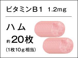 バランサー ビタミンB1