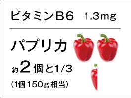 バランサー ビタミンB6