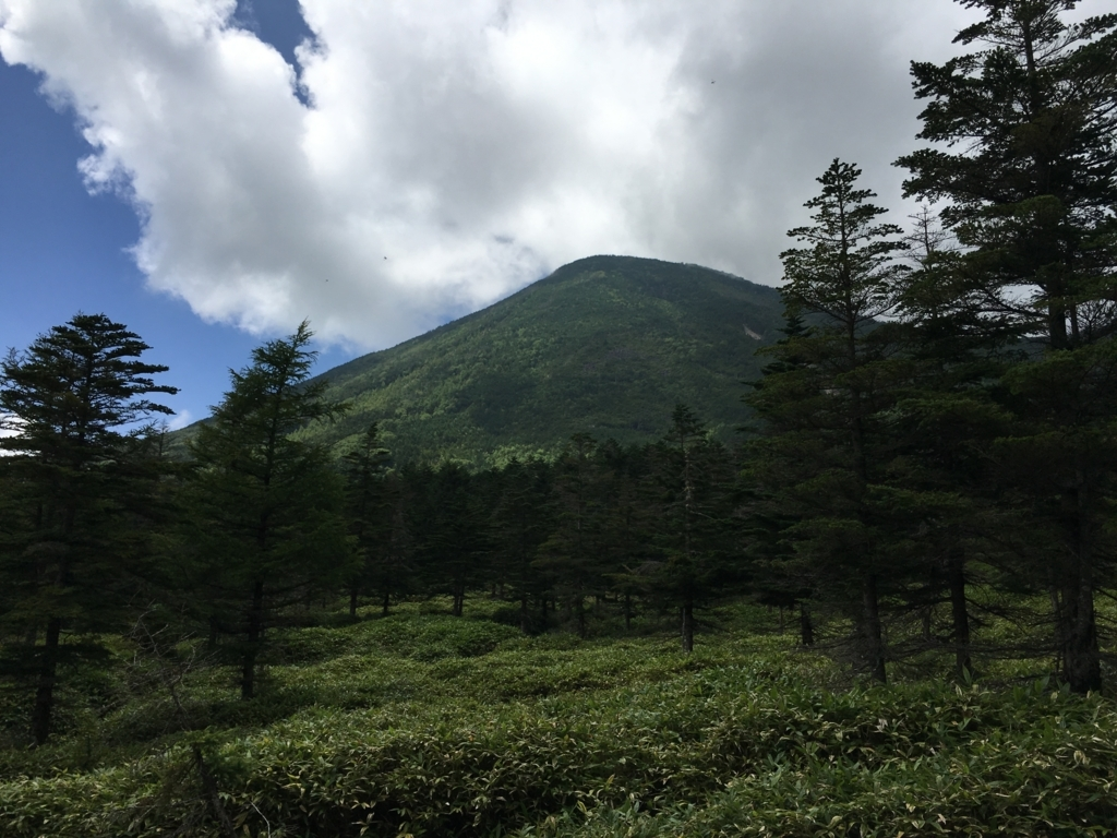 f:id:mayori-mountain:20170623212225j:plain