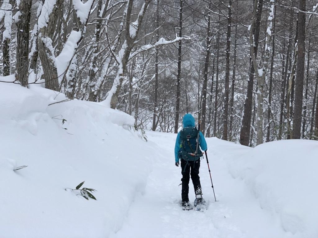 f:id:mayori-mountain:20180620231836j:plain
