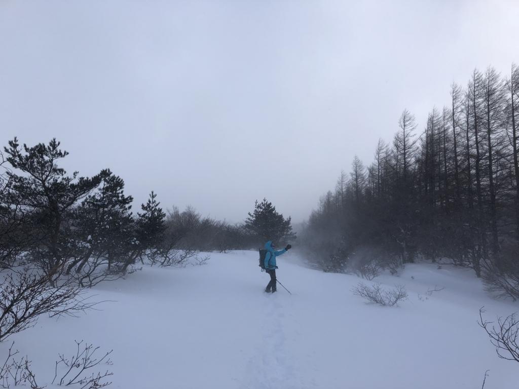 f:id:mayori-mountain:20180620231858j:plain