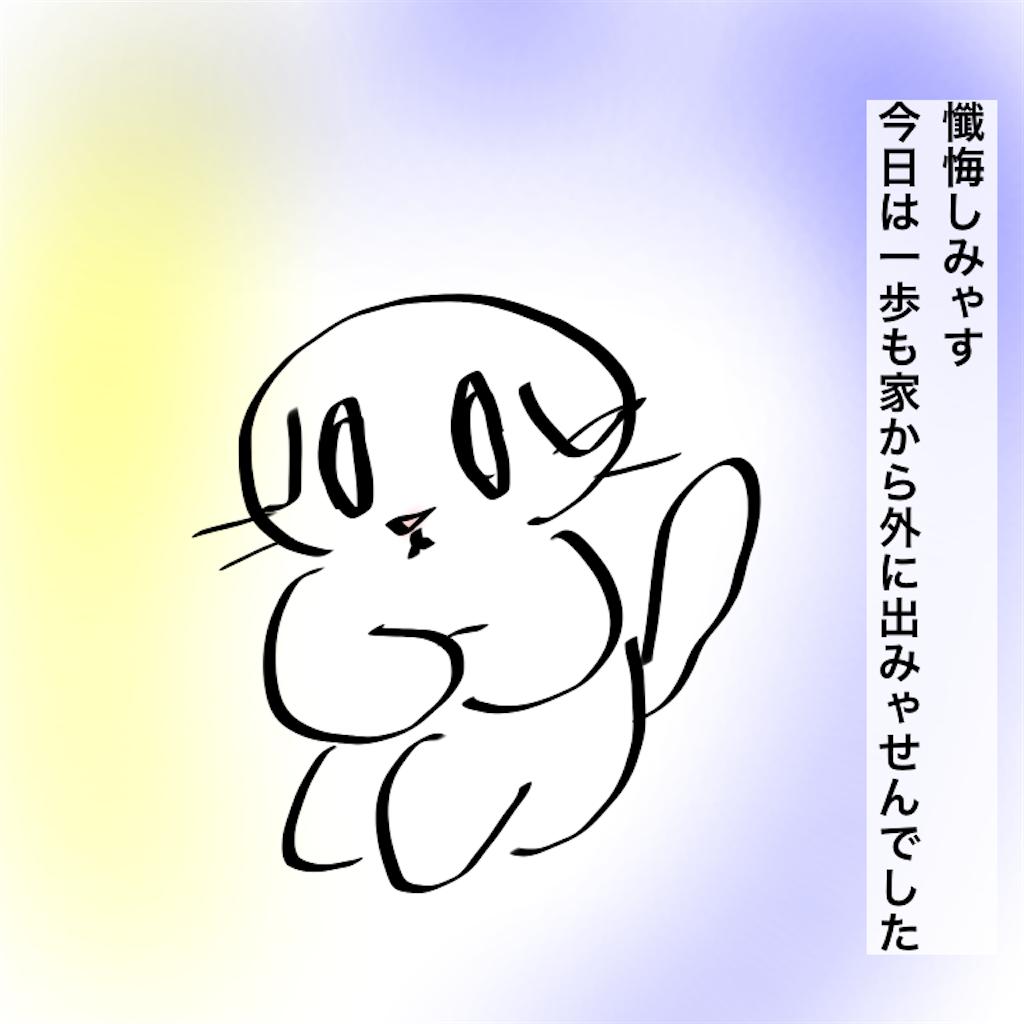 f:id:mayuchandesu:20210118233928p:image