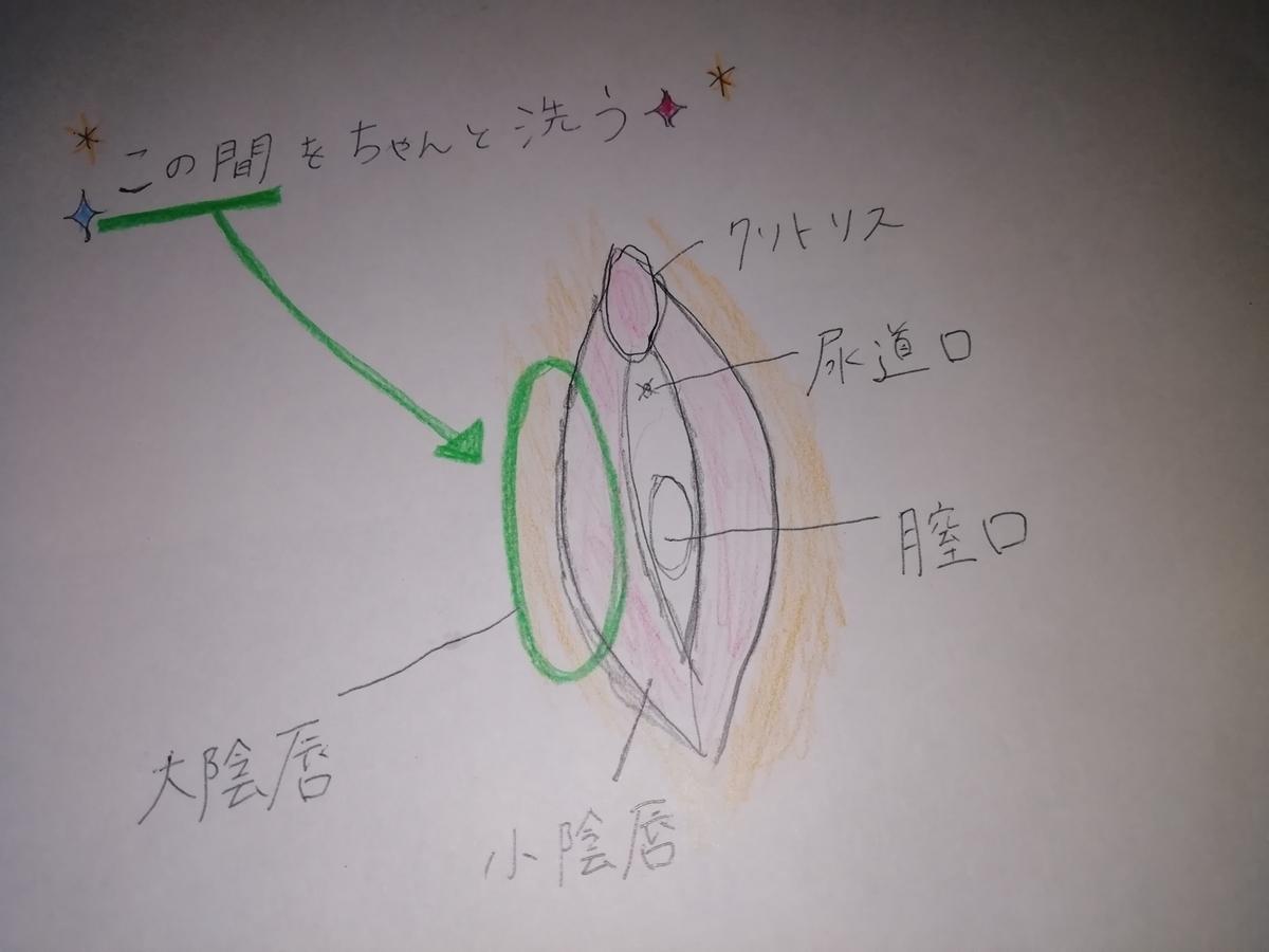 f:id:mayumi-diary:20190516202541j:plain