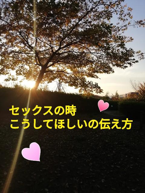f:id:mayumi-diary:20201117202100j:image