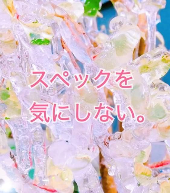 f:id:mayumi-diary:20210518112835j:plain