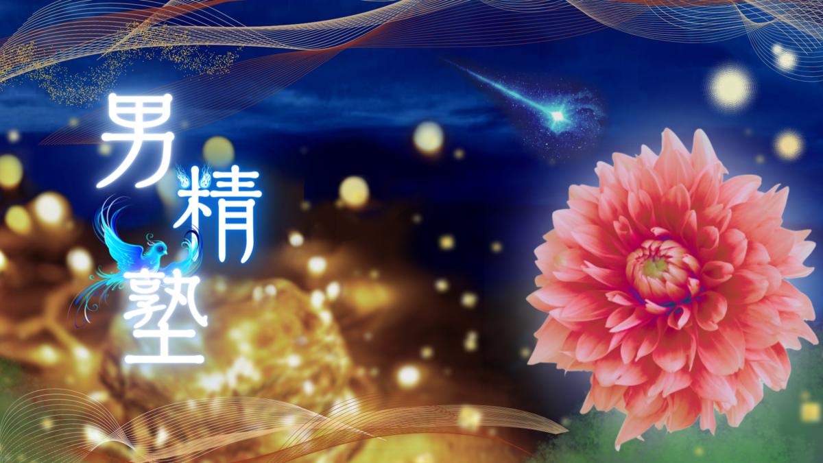 f:id:mayumi-diary:20210926141726p:plain