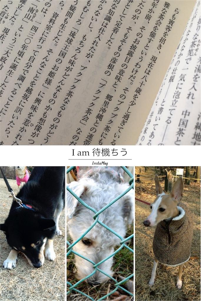 f:id:mayumim2:20170110095817j:image
