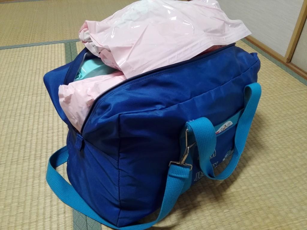 f:id:mayusachi:20161007153803j:plain