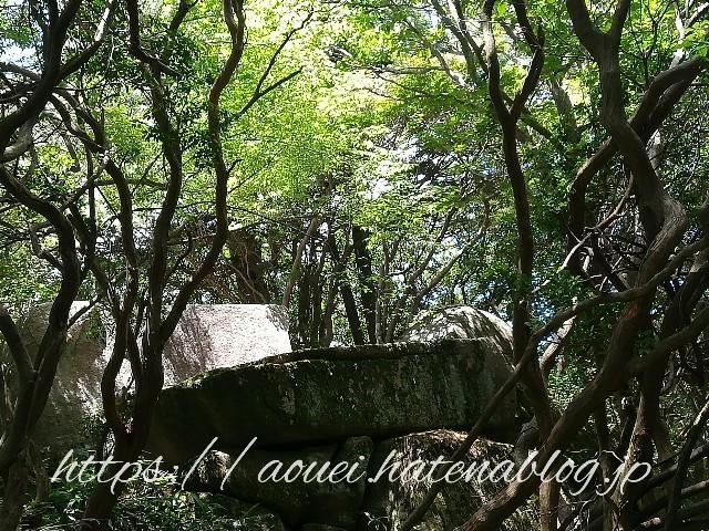f:id:mayusachi:20180729205450j:image