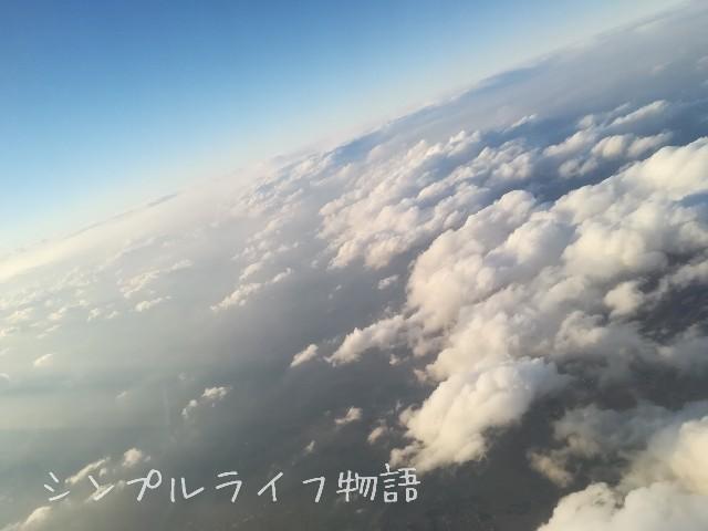 f:id:mayusachi:20190106094247j:image