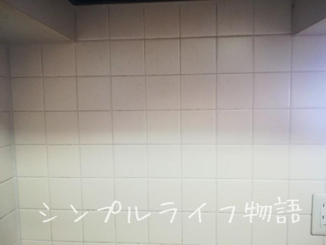 f:id:mayusachi:20190425231256j:image