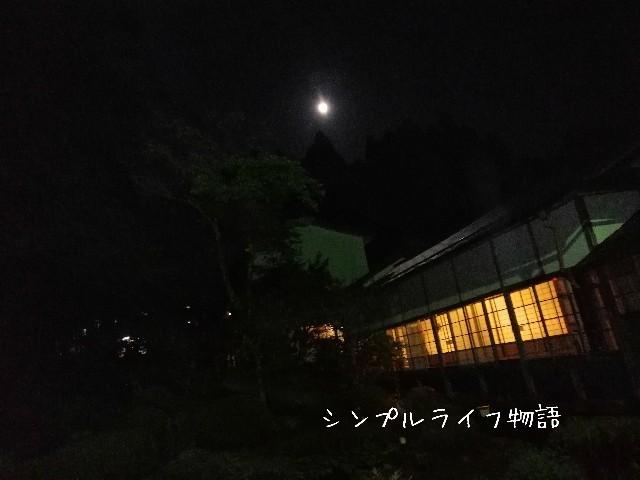 f:id:mayusachi:20190916145919j:image