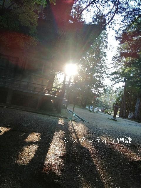f:id:mayusachi:20190916145944j:image