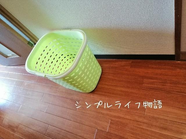 f:id:mayusachi:20190919145310j:image