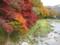 2008年の紅葉(塩原渓谷)