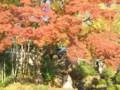 綱島陽林寺