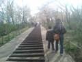 04/03 弘法山