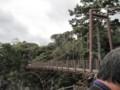 11/02 城ケ崎 吊り橋