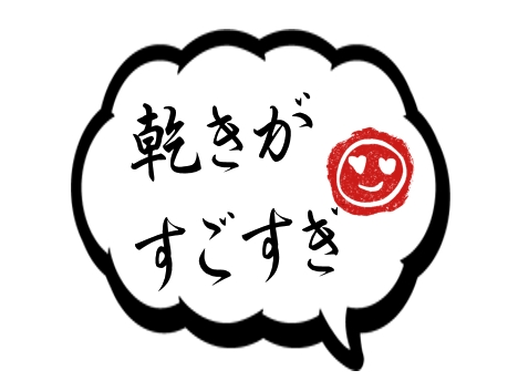 f:id:mazumazu7:20170320003622j:plain