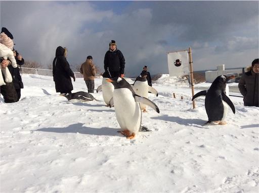 f:id:mbb-penguin:20160204211209j:plain