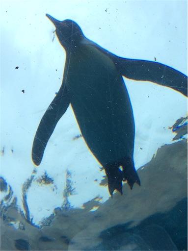 f:id:mbb-penguin:20160828115134j:image