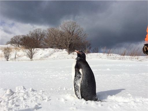 f:id:mbb-penguin:20170208070212j:plain