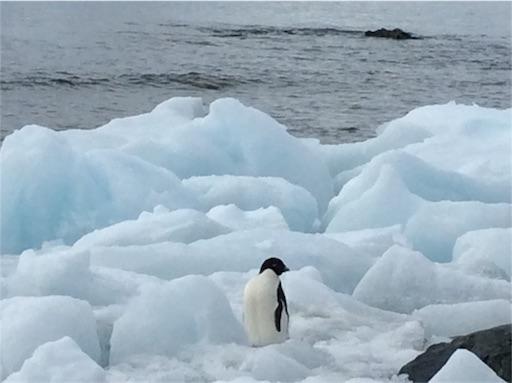 f:id:mbb-penguin:20170302133848j:plain