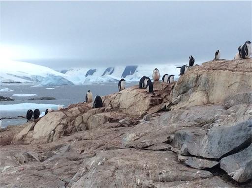 f:id:mbb-penguin:20170411093932j:image