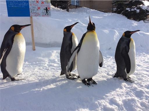 f:id:mbb-penguin:20180204200728j:plain