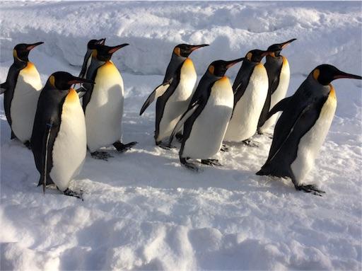 f:id:mbb-penguin:20180204200804j:plain