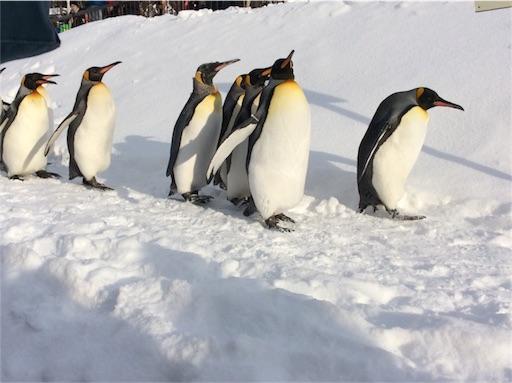 f:id:mbb-penguin:20180204200846j:plain