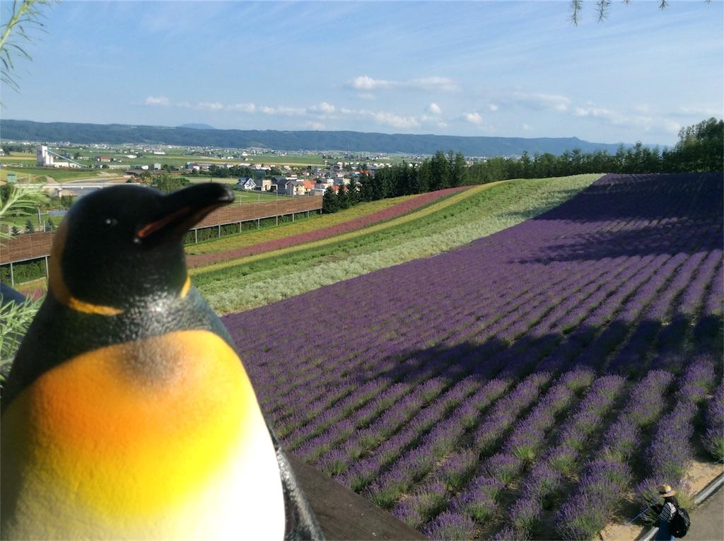 f:id:mbb-penguin:20180729141819j:image