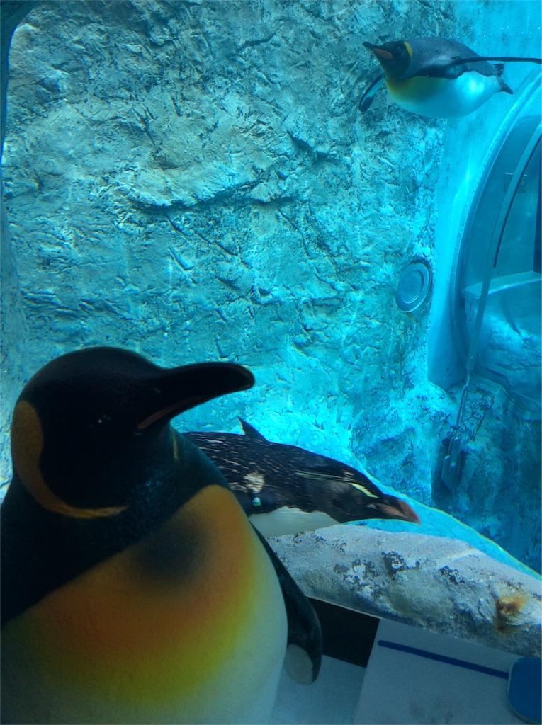 f:id:mbb-penguin:20180729142346j:plain