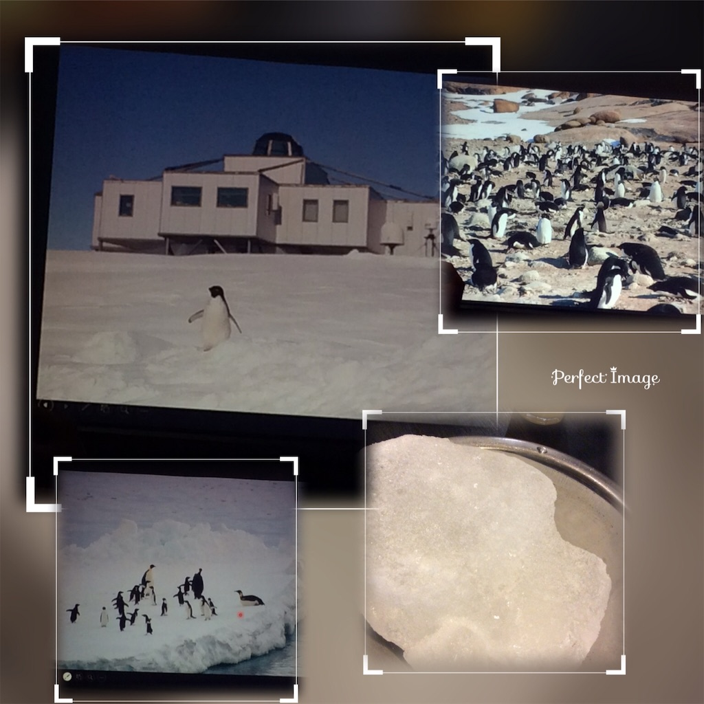 f:id:mbb-penguin:20181020064146j:image