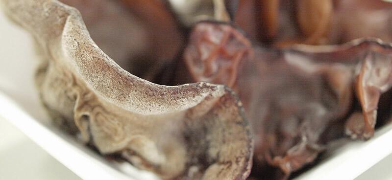 アラゲキクラゲの微毛