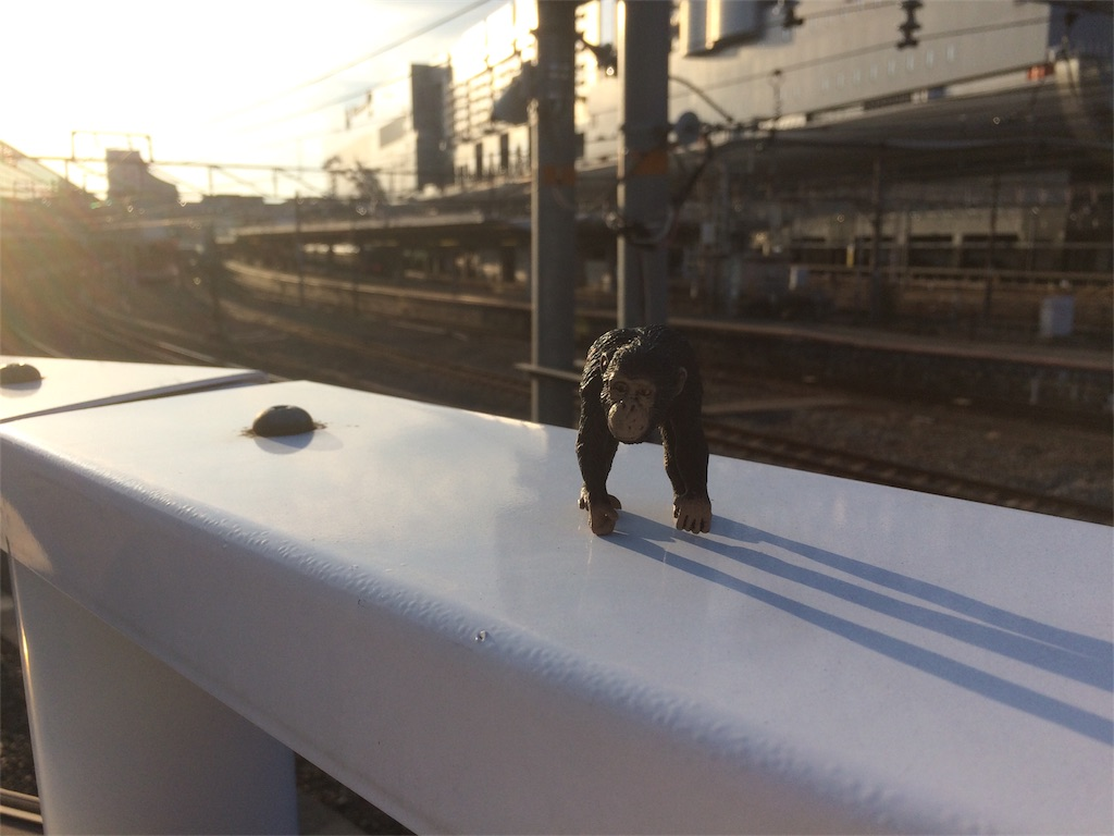 f:id:mdln_jp:20180403230426j:image