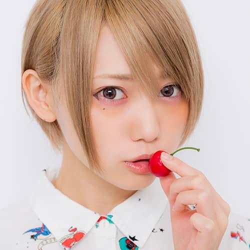 f:id:me-0shiki:20161117163911j:plain