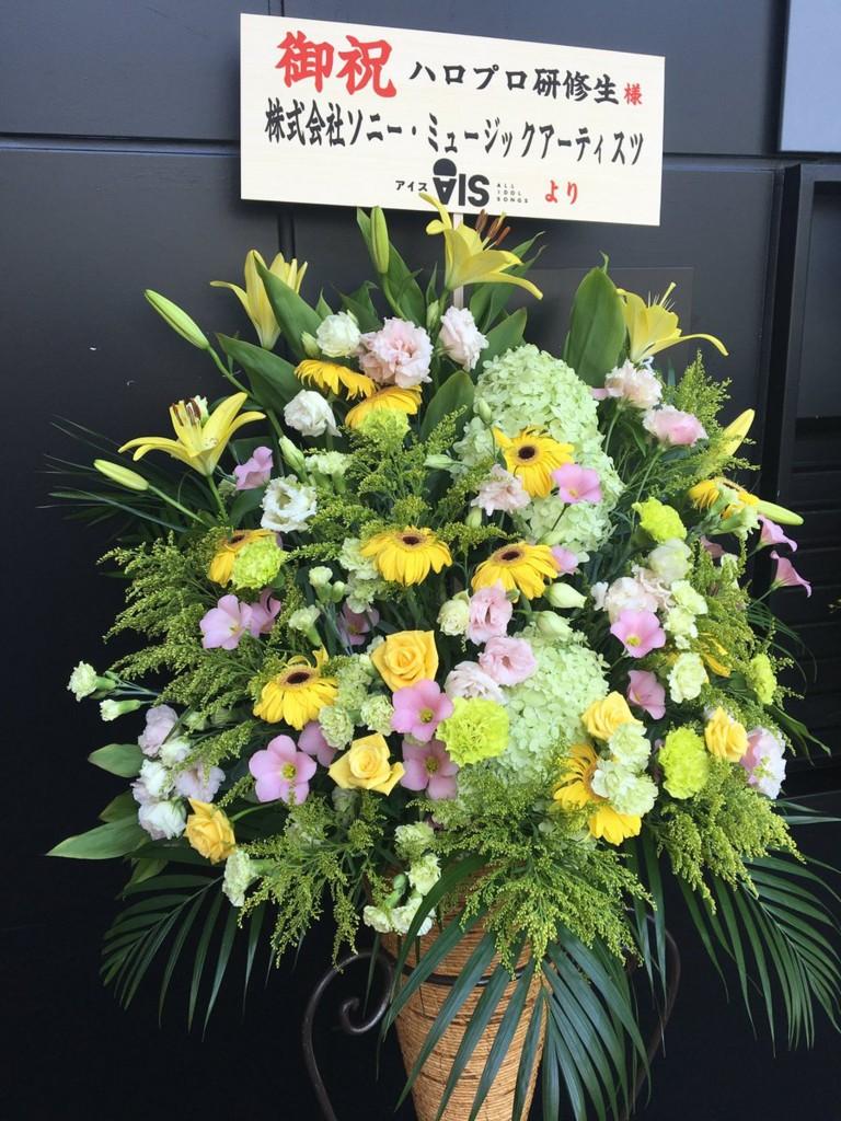 f:id:me-me-koyagi:20160908223815j:plain