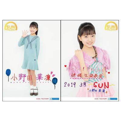 f:id:me-me-koyagi:20190316220356j:plain