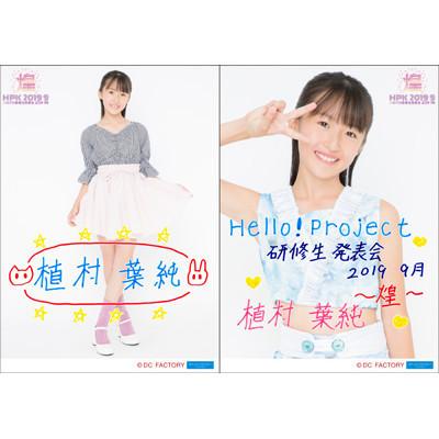 f:id:me-me-koyagi:20190908202835j:plain